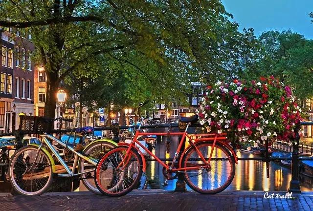 荷兰留学生活.webp.jpg