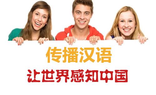 科克大学对外汉语教学专业入学要求2.jpg
