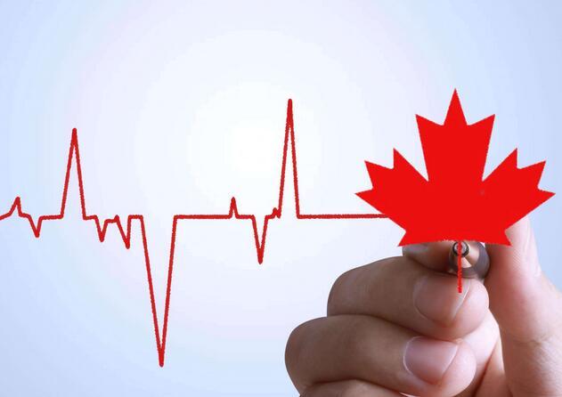 纯干货,加拿大签证申请攻略!