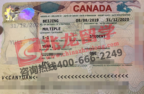 袁ruiyi-加拿大-约克大学本科学习签证-兆龙留学.jpg
