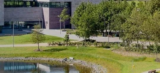 UCD校園.webp.jpg