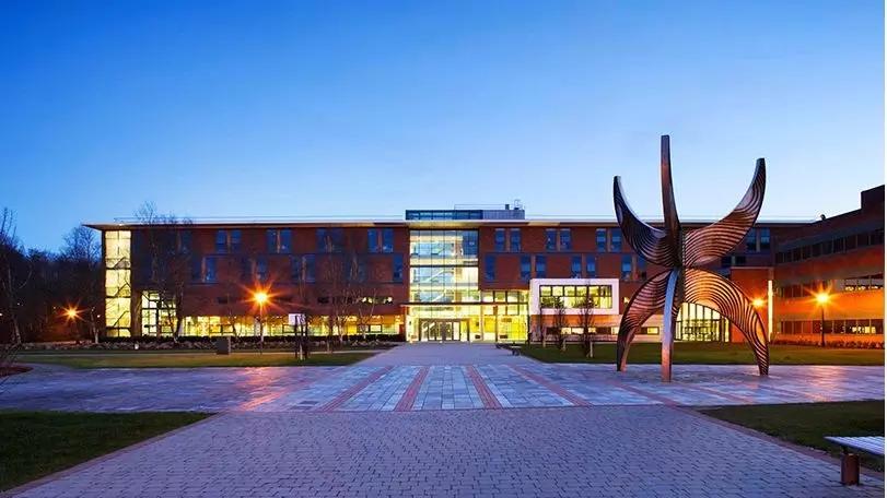 利莫瑞克大学商学院3.webp.jpg