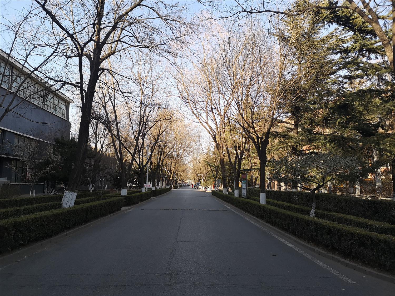 北京兆龙欧美亚预科学院 (1).jpg